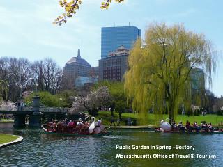 Public_garden_in_spring_boston