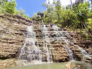 Tarzan_falls