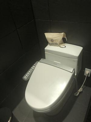 Gvo_toilet
