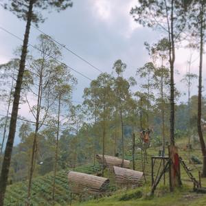 Eco_park