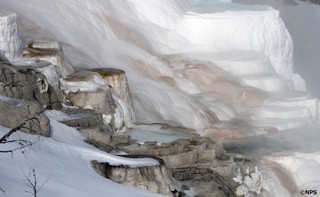 Terraced_mountain_mommoth_credit_np