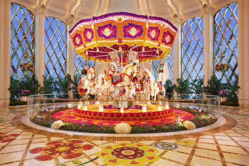01_carousel_south_atrium_day__roger
