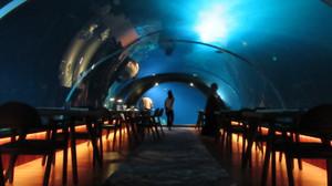 58_underwater_restaurant_02