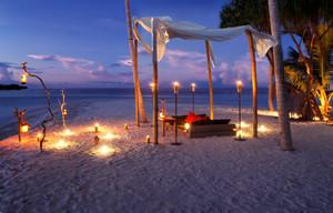Beach_dinner_pw1205
