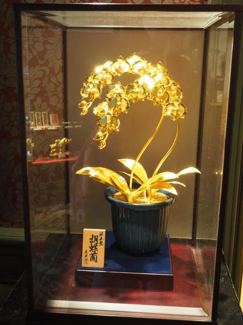金の胡蝶蘭