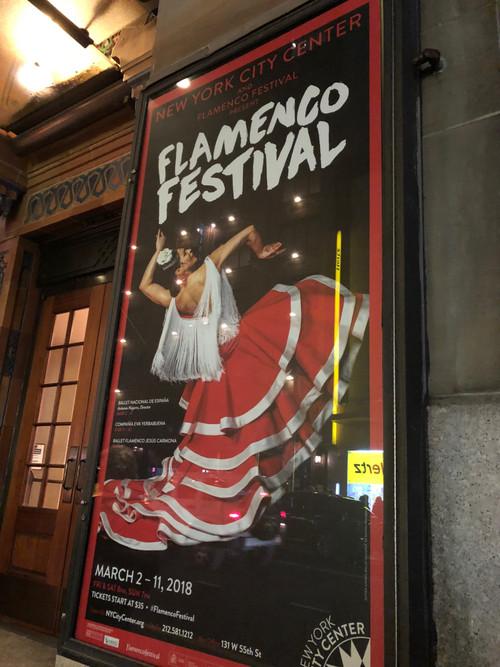 Flamenco_pic