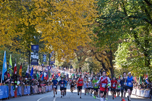 Nycm1_3