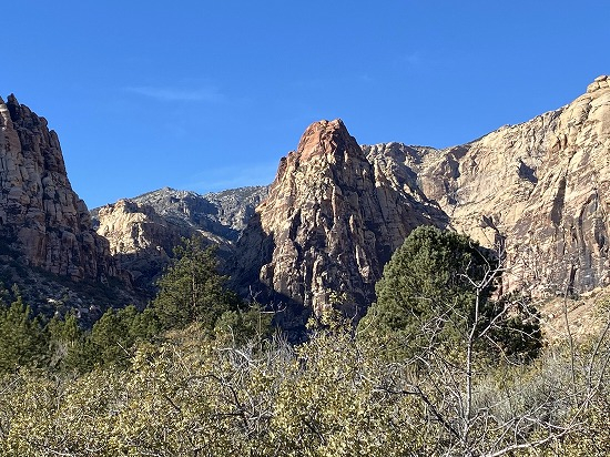 From_pink_creek_canyon_trail_mescal