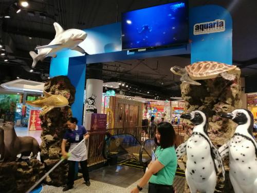 Aquaria_phuket