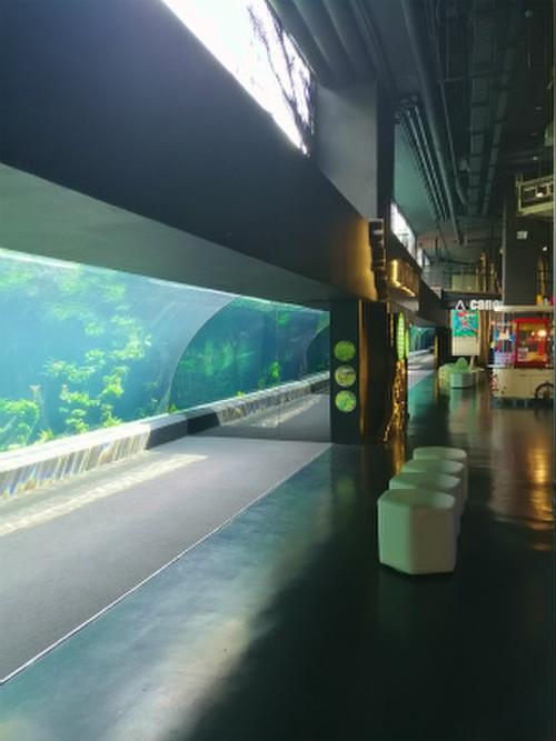 Aquaria_phuket13
