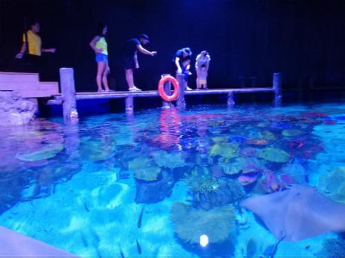 Aquaria_phuket9