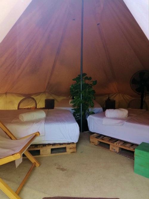 Roost_glamping3