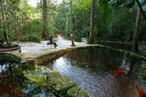 Eco_park_piscinas_naturais_1