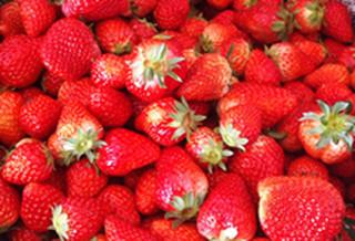 Strawberry01w220h150