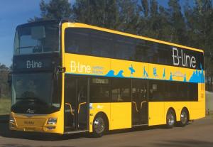 Blinebusbrand1