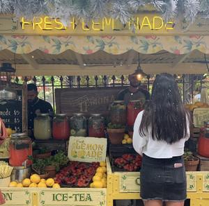 Lemonadethe_grounds