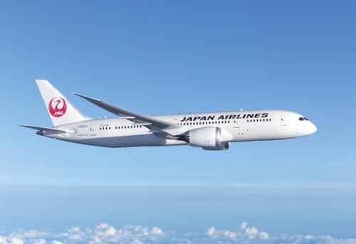 Airplane787