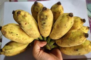 Banana1_2